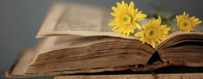 Uluslararası İlişkiler Tavsiye Kitap Listesi