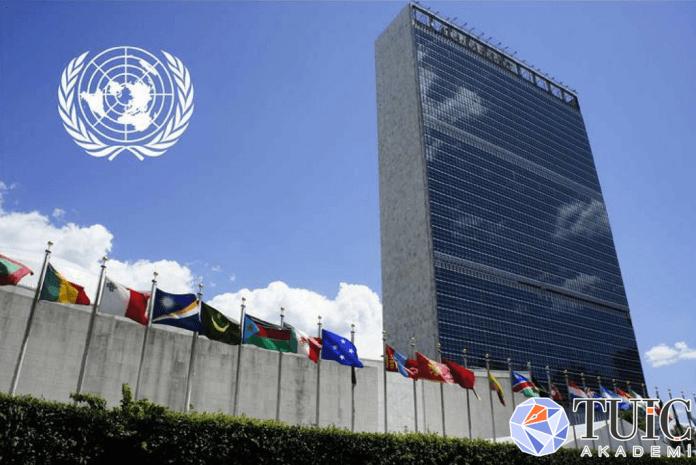 Uluslararası Hukukta Özrün Yasal Boyutu ve Kabulü